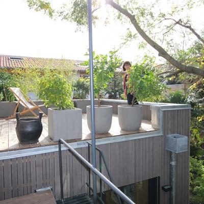 La terrasse sur le toit